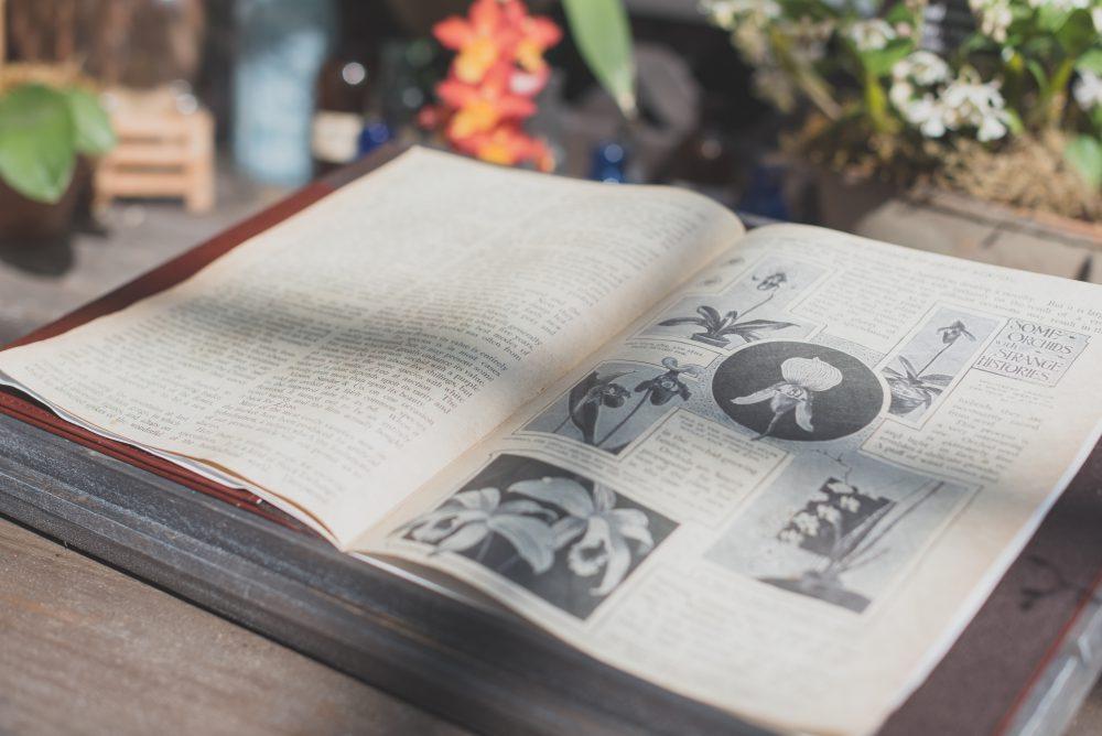 old herbal book